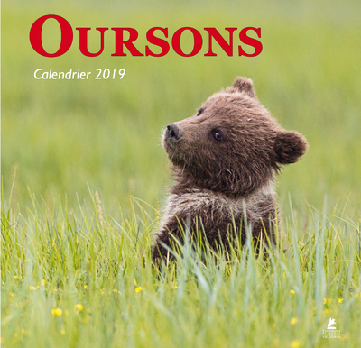 OURSONS - CALENDRIER 2019
