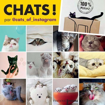 CHATS D'INSTAGRAM