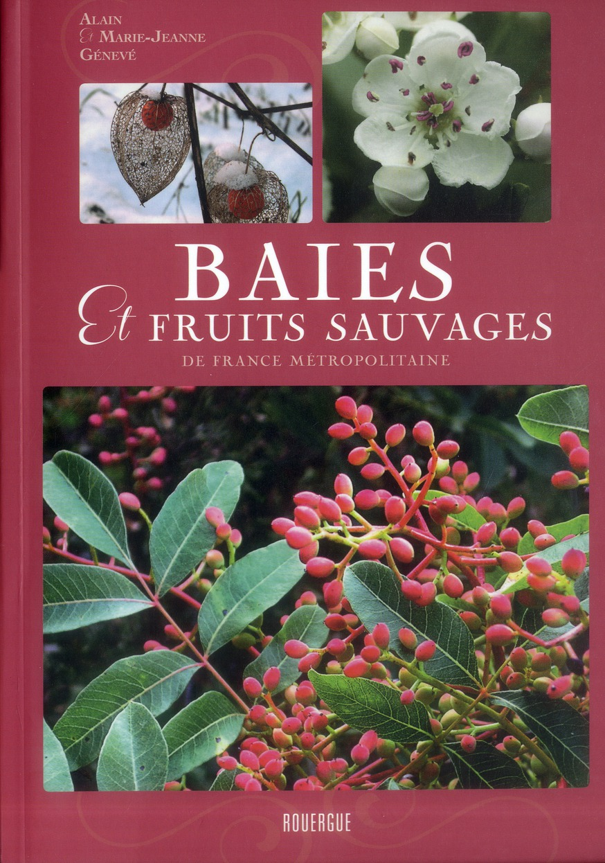 BAIES ET FRUITS SAUVAGES DE FRANCE METROPOLITAINE