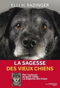 LA SAGESSE DES VIEUX CHIENS