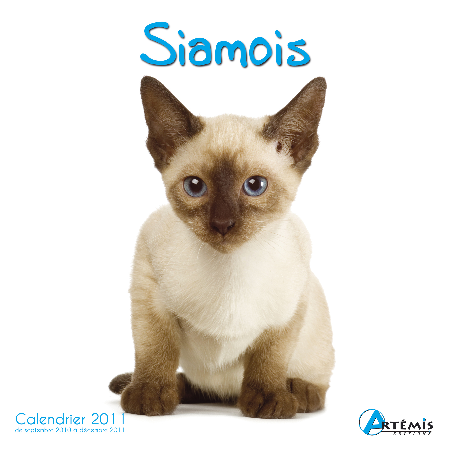 **CHAT SIAMOIS - (2011)