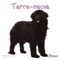 **TERRE NEUVE - (2011)