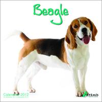 **BEAGLE 2012