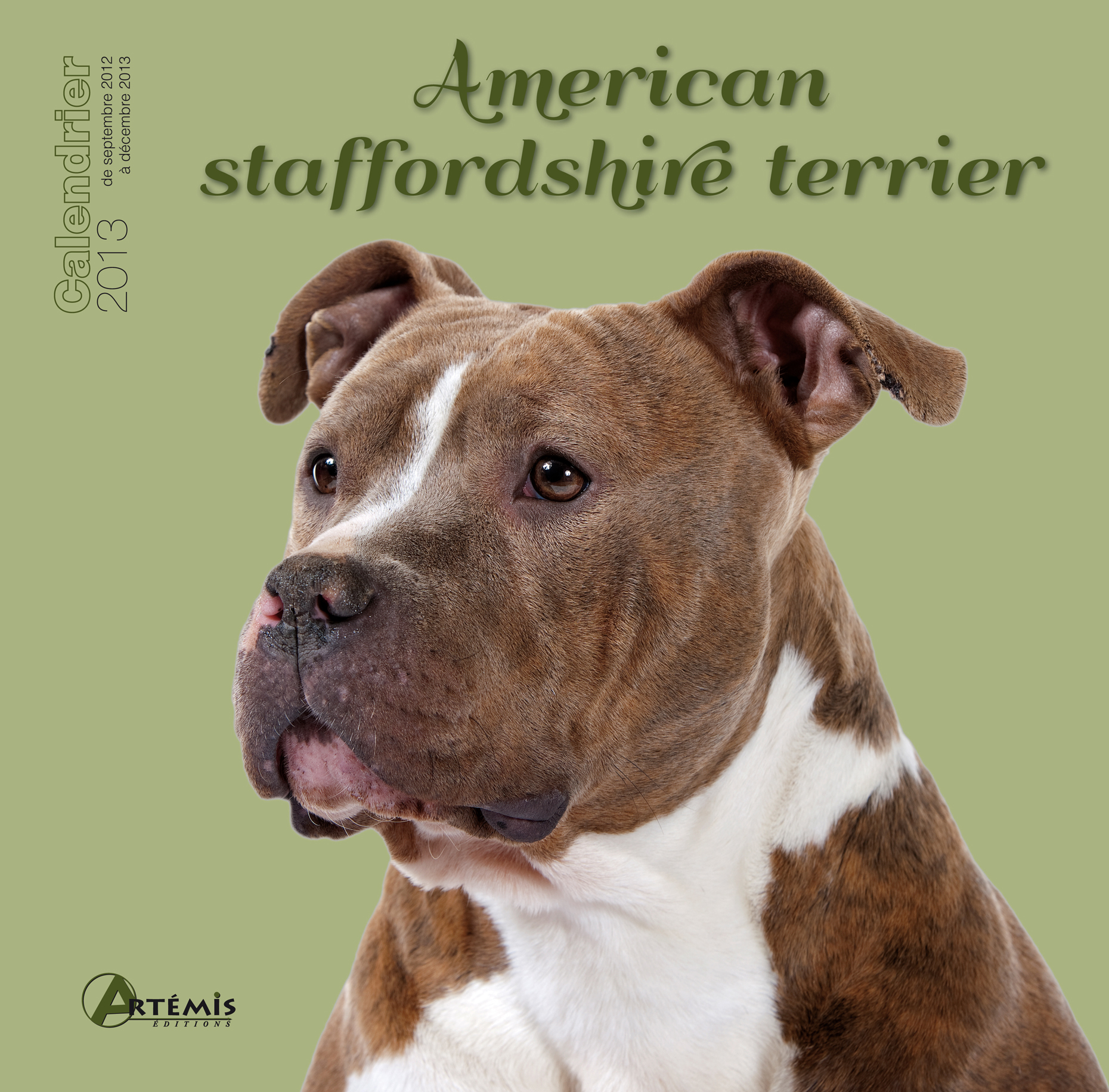 **AMERICAN STAFFORDSHIRE TERRIER (2013)