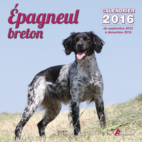 CALENDRIER EPAGNEUL BRETON (2016)