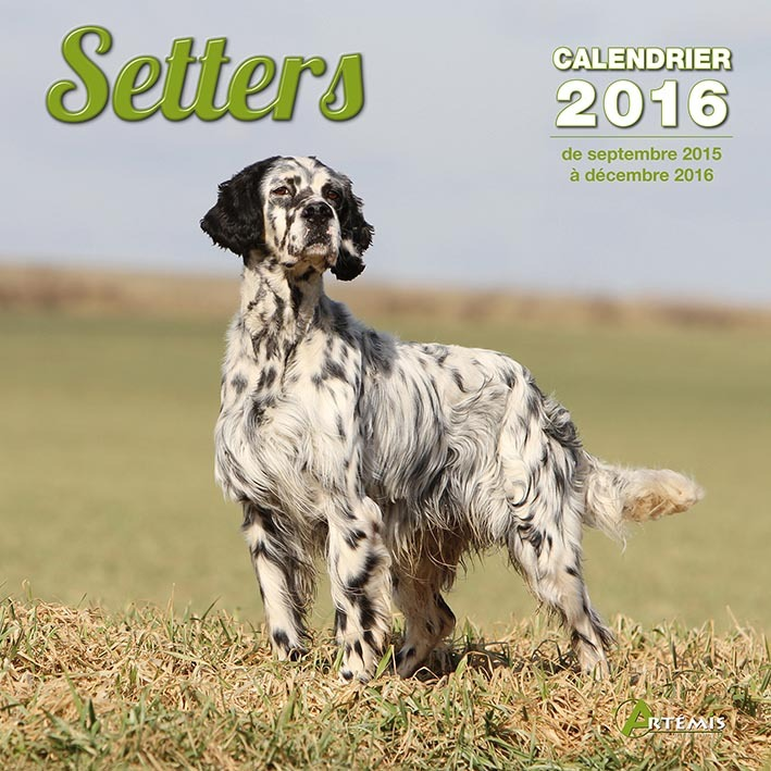 CALENDRIER SETTERS - 2016