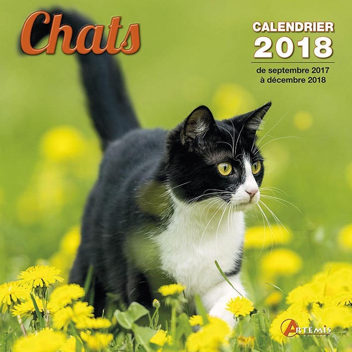CALENDRIER CHATS 2018