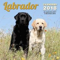 CALENDRIER LABRADOR 2018