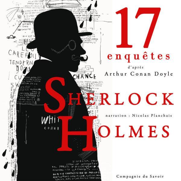 17 ENQUETES DE SHERLOCK HOLMES