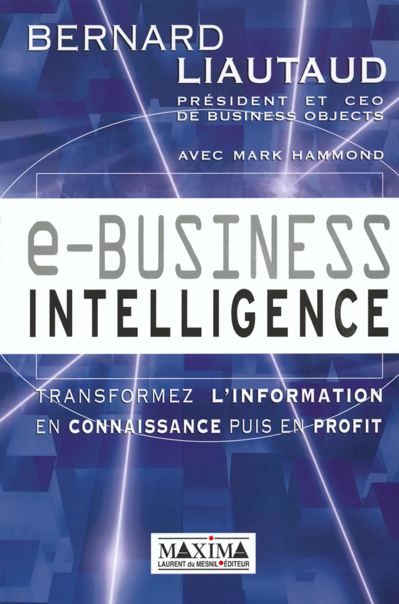 E BUSINESS INTELLIGENCE