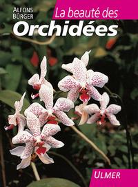 BEAUTE DES ORCHIDEES