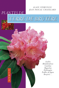 PLANTES DE TERRE DE BRUYERE