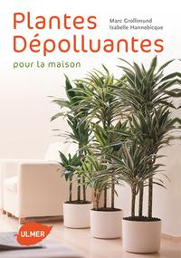 PLANTES DEPOLLUANTES POUR LA MAISON