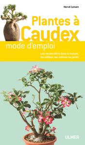 PLANTES A CAUDEX DE A A Z