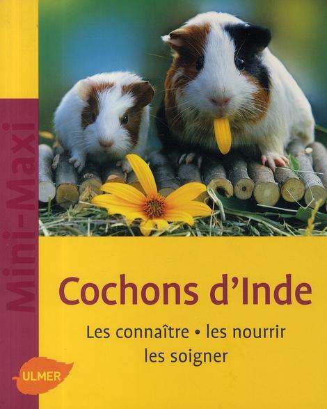 COCHONS D'INDE. LES CONNAITRE, LES NOURRIR, LES SOIGNER (NE)