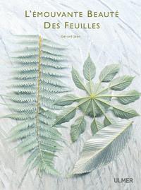 L'EMOUVANTE BEAUTE DES FEUILLES