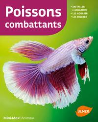 POISSONS COMBATTANTS