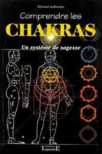 COMPRENDRE LES CHAKRAS - SYSTEME SAGESSE