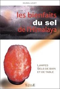 LES BIENFAITS DU SEL DE L'HIMALAYA : LAMPES, SELS DE BAIN ET DE TABLE