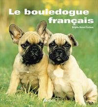 **BOULEDOGUE FRANCAIS