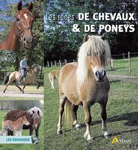 LES RACES DE CHEVAUX ET PONEYS