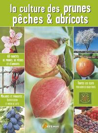 CULTURE DES PRUNES, PECHES  ABRICOTS (LES)