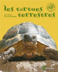 TORTUES TERRESTRES (LES)