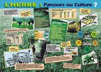 HERBE, PARCOURS OU CULTURE ? (L')