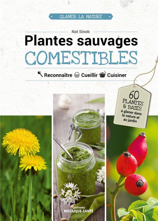 PLANTES SAUVAGES COMESTIBLES