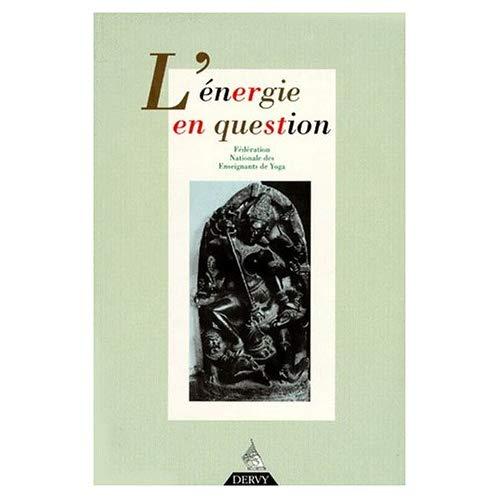 ENERGIE EN QUESTION (L')