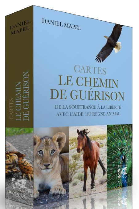CARTES LE CHEMIN DE GUERISON
