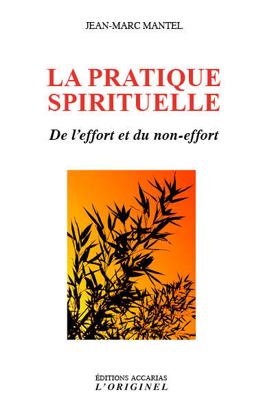 LA PRATIQUE SPIRITUELLE - DE L'EFFORT ET DU NON-EFFORT