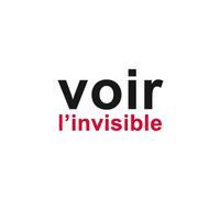 VOIR L'INVISIBLE - COMPRENDRE - AGIR. TOME 2