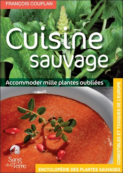 LA CUISINE SAUVAGE - ACCOMMODER MILLE PLANTES OUBLIEES