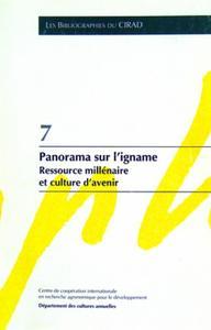 PANORAMA SUR L'IGNAME - RESSOURCE MILLENAIRE ET CULTURE D'AVENIR
