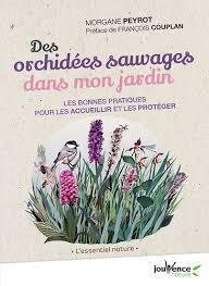DES ORCHIDEES SAUVAGES DANS MON JARDIN - LES BONNES PRATIQUES POUR LES ACCUEILLIR ET LES PROTEGER