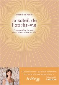 LE SOLEIL DE L'APRES-VIE - COMPRENDRE LA MORT POUR MIEUX VIVRE SA VIE