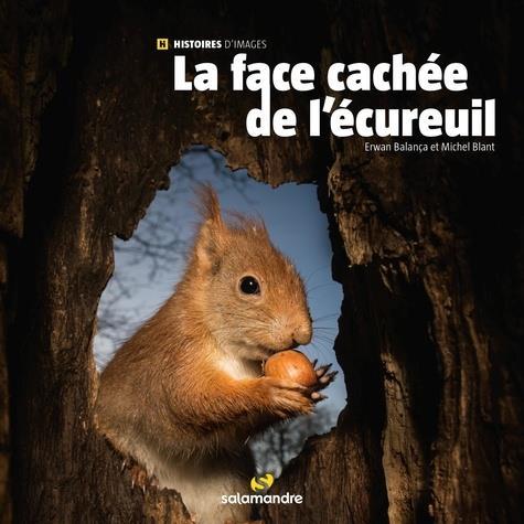 LA FACE CACHEE DE L'ECUREUIL