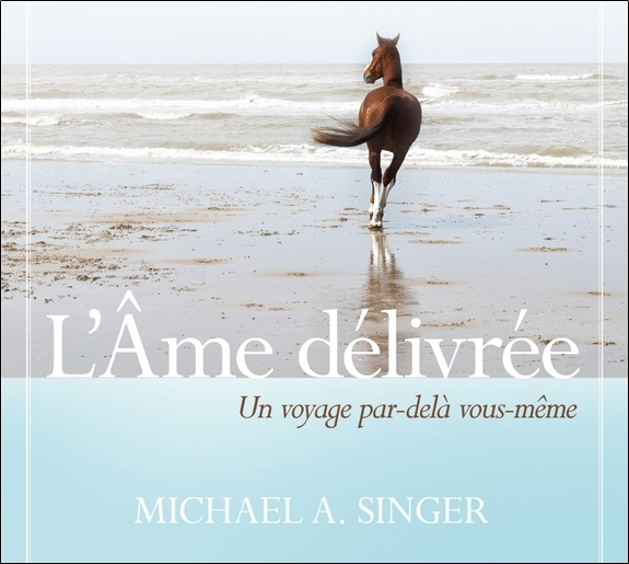 L'AME DELIVREE - LIVRE AUDIO 2 CD