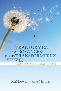 TRANSFORMEZ VOS CROYANCES ET VOUS TRANSFORMEREZ VOTRE VIE - TAPOTEMENTS EFT AVEC REENCODAGE DE LA MA