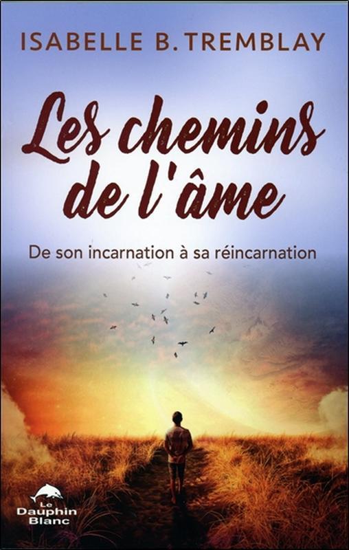 LES CHEMINS DE L'AME - DE SON INCARNATION A SA REINCARNATION