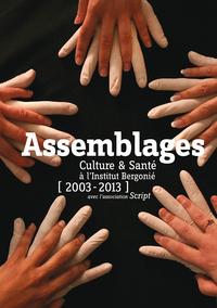 ASSEMBLAGES CULTURE ET SANTE A L'INSTITUT BERGONIE AVEC L'ASSOCIATION SCRIPT 2003-2013