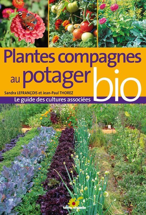 PLANTES COMPAGNES AU POTAGER BIO