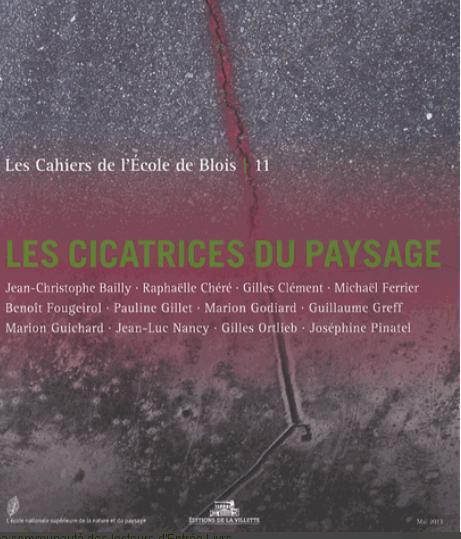 LES CAHIERS DE L'ECOLE DE BLOIS N 11. LES CICATRICES DU PAYSAGE
