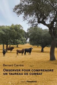 OBSERVER POUR COMPRENDRE UN TAUREAU DE COMBAT