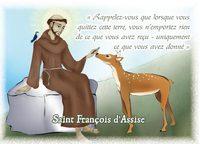 """IMAGES SAINTES """"SAINT FRANCOIS D'ASSISE"""" PAR LOT DE 10"""