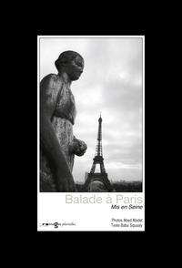 BALADE A PARIS, MIS EN SEINE