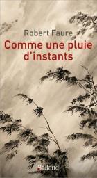 COMME UNE PLUIE D'INSTANTS