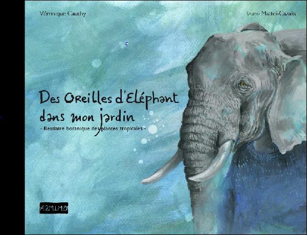 OREILLES D'ELEPHANT DANS MON JARDIN (DES)