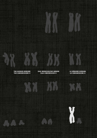 LE CHROMOSOME X ET LE GENOME HUMAIN